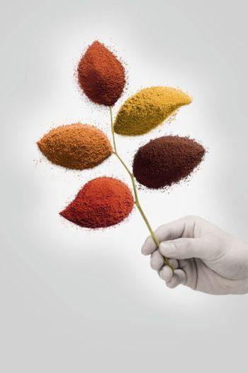 organicheskie pigmenty, pigment, pigment dlya glaz, pigment dlya browey, pigment v kosmetike, pigment dlya okrashivaniya